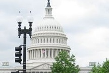 Get Involved / Advocating for multiple millions in public health dollars for lung cancer research by using targeted political strategies mobilizing a nationwide network of volunteer advocates / by LC Alliance