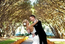 Fall Wedding Ideas / by Sara Hammonds