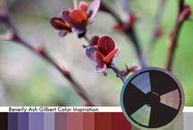 KOLORY inspiracje / łączenie kolorów