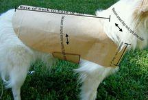 Dog jerseys