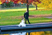 shp bride & groom