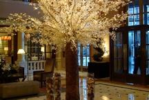 lobby luxury