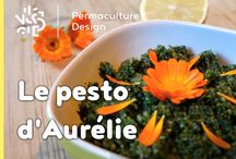 Permaculture - Recettes / Ici toutes les images et illustrations des recettes publiées dans la rubrique Permaculture Humaine de PermacultureDesign. Découvrez nos articles complets sur : http://www.permaculturedesign.fr