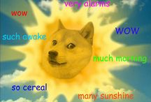 Such Doge Wow So Much Doge / Largest collection of doge images and gifs on the Internet. Guaranteed.