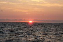 Sailing the North Sea / sailing expedition 2010  Start at the Hague Sail to the English coast Return to Rotterdam