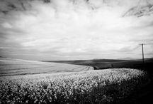 Landscapes by Jorina Kriel Photography / beautiful landscape photography