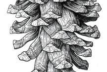 pine cone tattoos