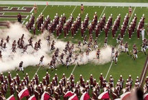 All that is the MISSISSIPPI STATE BULLDOGS!!! / by Lisa Mann