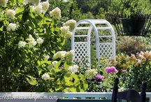 Gardens, Flowers and Flora / by House on the Way - Home Decor & Design Blog