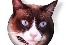 Fun Cat Websites