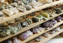 naturalist / collections of gems, crystals, minerals, leaves, insects, bones, shells, natural items