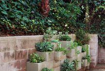 Kertészkedés , kertépítés