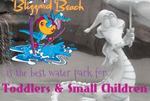 Water Park Fun / by Fairy Tale Concierge~Chrissy Spakoski~Disney Vacation Specialist