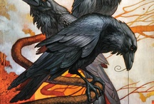 Crows / by Suzanne Johnson