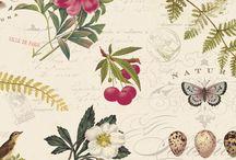 Brenda Walton for Blend Fabrics