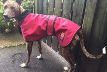 Client photos / Here's a collection of our lovely customers modelling their coats and fleeces