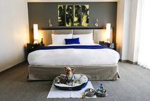 Pet friendly luxury hotels