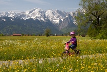 For the kids / Bike riding in the valley. Plenty of trails and flat bike paths to explore.