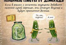 рецепты)