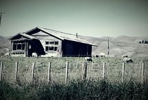 photography / Shack,  photo op, beauty from ashes