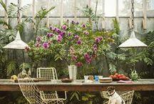 Jardim | Garden