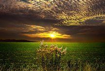 Dusk to Dawn / by Brandy Hatcher