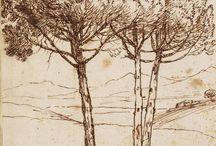 Árvores / Trees - Desenho /drawing