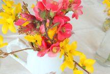 Fleurs , herbes aromatiques, jardins, légumes et fruits / Des petits bouquets....