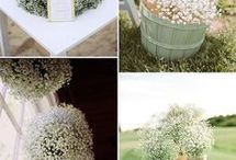 Design. Wedding