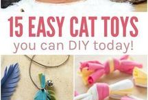 Cats toys