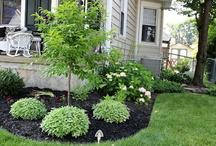 Front flowerbeds