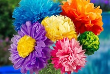 Making flowers  / by Violet Flowers