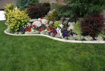 nasa zahrada