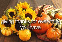 Thanksgiving / by Maddie Hilf