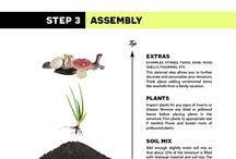 how to: build a terranium