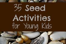 Seeds / Activities and inspiration for a seed-themed lesson plan.