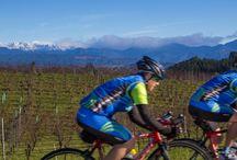 road bike tours Nelson/Tasman