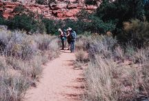 Southwest USA / Arizona, Nevada, New Mexico, Utah, and the American Southwest