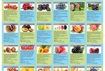 Information Food Charts / Information food charts, vegetables, fruit and food pyramids