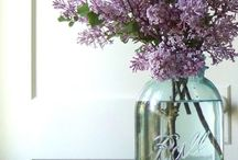 FLOWERS & PLANTS / Flowers, bouquets, arrangements and floristry tips and ideas.
