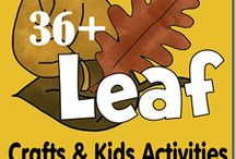 Homeschool - Fall Activities