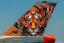 Tigers in the Air