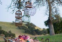 Свадьбы на открытом воздухе