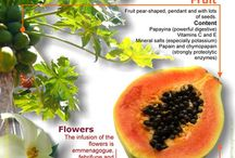 Nutritional benefits of particular foods
