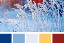 Design Ideas:  Color Palettes
