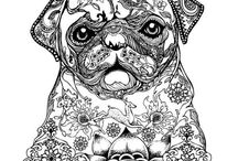 Adult Coloring Pages for Pet Owners / Coloring pages of pets and other animals.