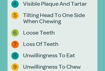 Dog Dental / Everything you need to know about your dog's​ dental care.