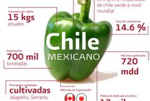 Chiles / by Key Guilbert