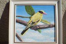 sárga madár