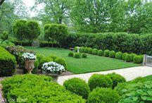 jardin modern
